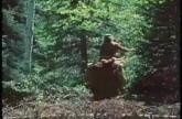 Buffalo Rider (1978)